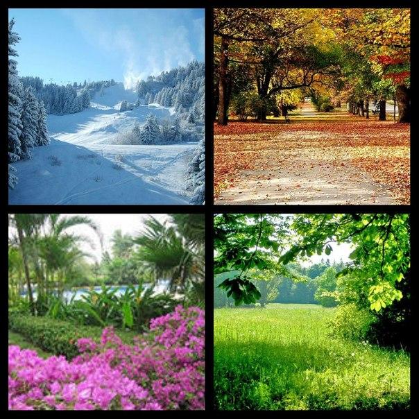 лето зима весна осень фото