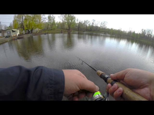 Три заброса - три поклёвки. Ловля форели на SMITH Niakis 48mm 3g (AREA FISHING)