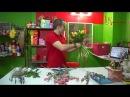 Составление оригинального букета из тюльпанов