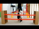 Cat Agility CASHMERE TRICKS AND TARGET TRAINING