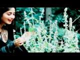 Adeel & Gul-E-Rana Vm   My Dil Goes Mmmm  
