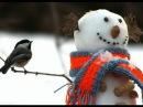 Снеговик mpg Павел Плаксин