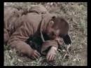 Операция Барбаросса в цвете 1941г
