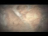 VA - Disciple 03: Risen (Teaser)