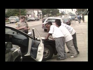 История песни 'Fuck Tha Police' | Правильный перевод | Shao ©