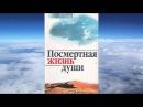 А.И. Осипов - Из времени в вечность: посмертная жизнь души
