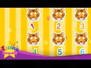 How many tiger? lions? (Counting animals) - English education song for Kids - Let's sing with lyrics