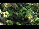 Guy Sweens - песня горных потоков релакс.