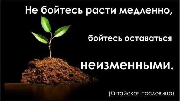 Размах репрессий против крымских татар доказывает, что Россия боится их способности к самоорганизации, - Gazeta Wyborcza - Цензор.НЕТ 6219
