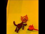 Кот и Мышка .Студия