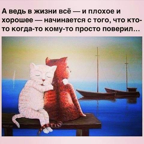 https://pp.vk.me/c633231/v633231810/20ac8/V-VlP28NpZU.jpg