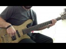 Evergreen is Golder BASS COVER Paulo Soza