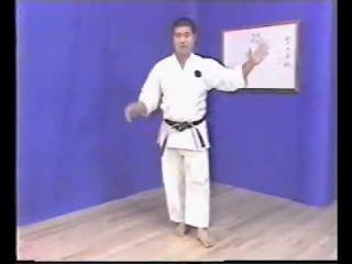 Ката Сайфа - стиль Годзю рю сенсей, Морио Хигаонна