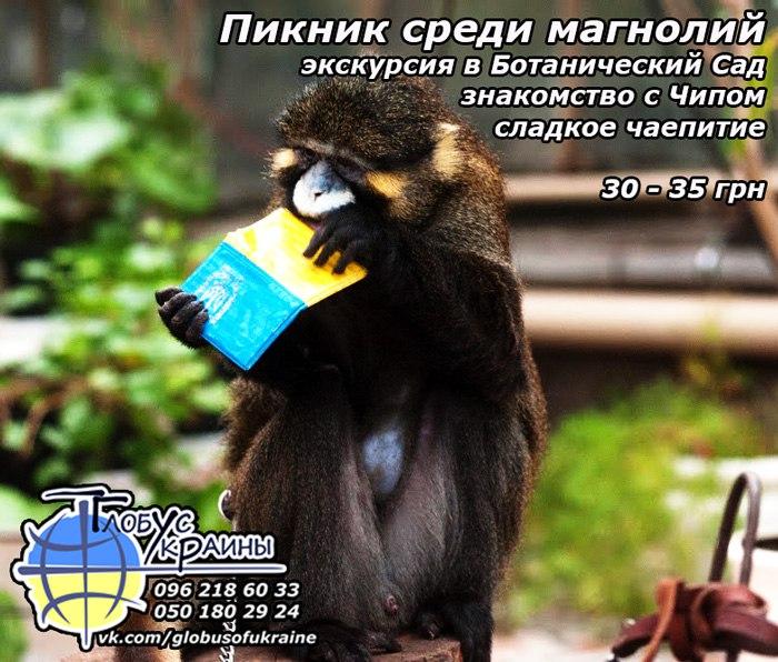 Глобус Украины, Ботанический сад, запорожье, обезьянка Чип
