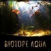 Биотопные аквариумы   Подводные фотографии