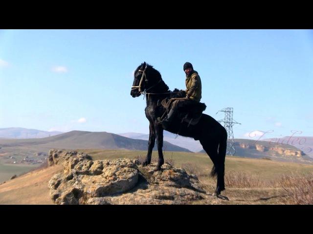 Конный пробег в Малом Карачае. 07.03.2016 г.
