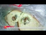 Роспотребнадзор начал проверку саратовского хлебозавода после сообщения о `крысе в батоне` - Первый канал