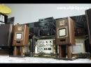 Sony APM 22ES flat speakers