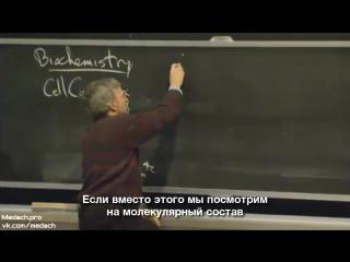 MIT Lecture Виды организмов, состав клетки часть 2