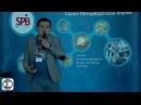 Элвис Марламов на конференции смартлаба 14 мая HD, 720p