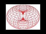 Dynamic Flow Process of Tube Torus