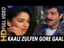 Kaali Zulfen Gore Gaal   Mohammed Aziz, Asha Bhosle   Pratikar Songs   Madhuri Dixit, Anil Kapoor