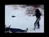Бои без правил ЛУЧШИЕ ДРАКИ 2015