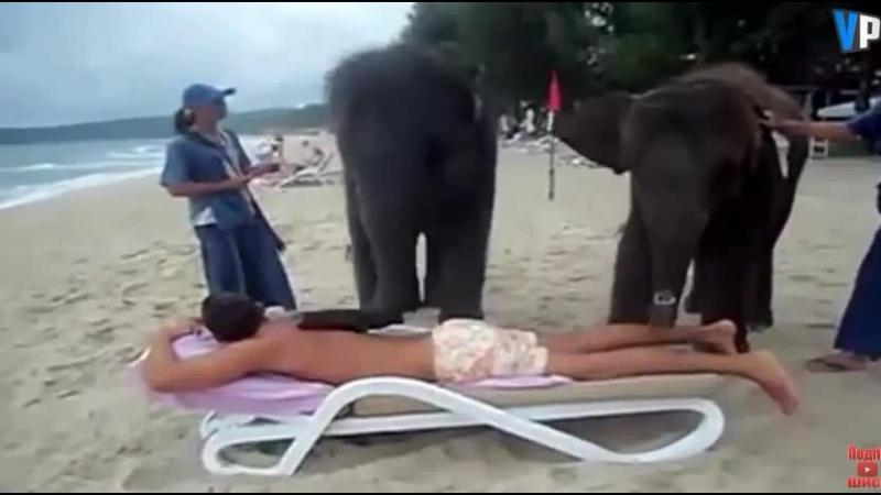 Ласковый слоновый массаж ))