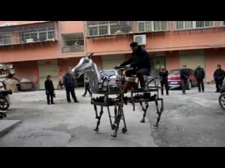 Chinese Man Has a Robotic Horse