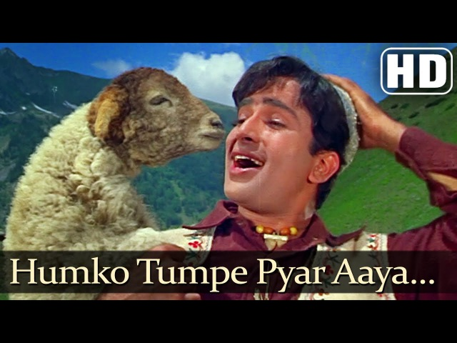 Affo Khudaa Hum Ko Tum Pe Pyar Aya | Jab Jab Phool Khile | Shashi Kapoor | Nanda | Zero Trailer Song