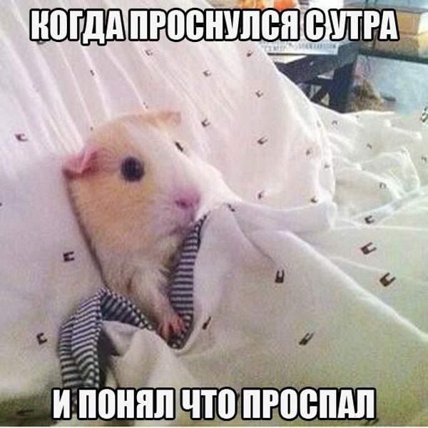 Заебись приколы 18+ (видео,музыка ...: vk.com/public57702619