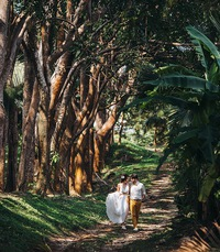 Бесплатные стримы по Свадебной Фотографии.
