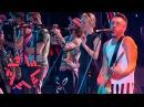 Ленинград - WWW Концерт на Новой Волне 2015