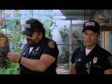 Superpolicajti z Miami  - Bud Spencer a Terence Hill