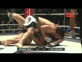 Бреннан Ворд vs Кен Хасегава 2015 RIZIN FF Day 2