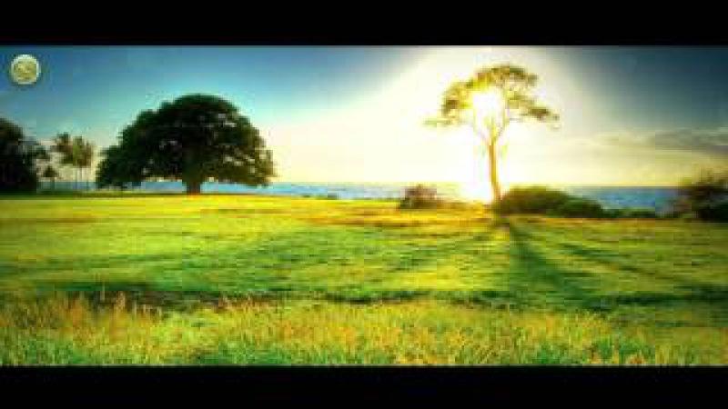 Гибель халифа Усмана бин Аффана (да будет доволен им Аллаh)