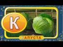 Мультипедия Русский алфавит Буква К Уроки тетушки Совы