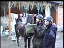 Боевики во время второй Чеченской Войны.The militants during the second Chechen War.