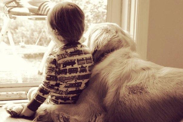 Собака и ребёнок L5kQ8EJ-s_w