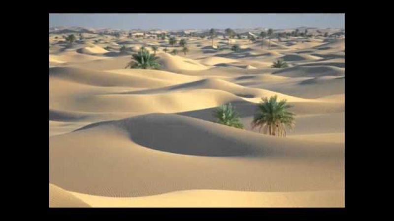 ARABIC MUSIC OUD instrumental ( Mohamed rouane - EVASION)