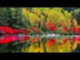 #2. Красота мира. О красоте МИРА.