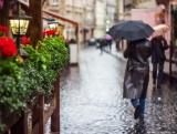 Послухаю цей дощ - Ліна Костенко (Тетяна Кулька)