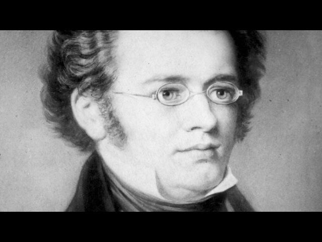 ФРАНЦ ШУБЕРТ - Соната для арпеджионе ля минор, D. 821. (Franz Schubert)