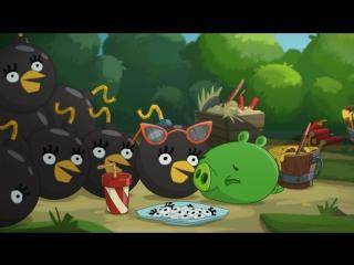 ЗЛЫЕ ПТИЧКИ - Angry Birds мультфильм - 2 сезон - 24 (Все серии в альбоме группы)