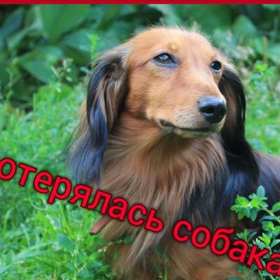 Ирина Землянских