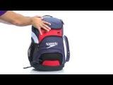 Обзор рюкзака Speedo Teamster.