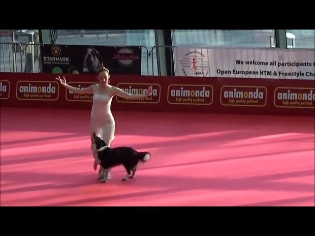 Собака и её хозяйка просто ошеломили зрителей!