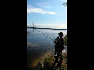 Рыбак поймал загадочную.Рыбу. Речного Монстра Просто Жесть Рыбка