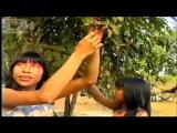 Дикие племена - Das crianças Ikpeng para o Mundo (Leg Português)