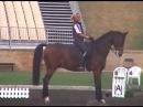 Anky van Grunsven Bonfire warm up Sydney 2000 Olympics